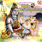 शिव तेरी महिमा songs