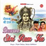 दीवाने श्री राम के songs