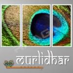 Murlidhar songs