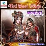 Teri Yaad Mein Kanhaiya songs