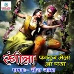 Rangila Fagun Mela Aa Gaya songs