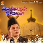 Mera Khwaja Ali Ka Pyara Hai songs