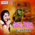 Agar Babu Tu Na Hota songs