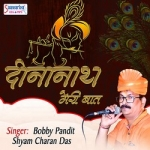 Khatu Shyam Tere Charno Mein Hum songs