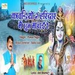 Kawadiyo Ne Haridwar Me Dhoom Machai Re songs