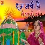 Dhoom Machi Hai Selaani Ki songs