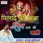 Pilade O Baba Shyam Naam Ki Masti songs
