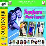 Tumare Hone Lage songs