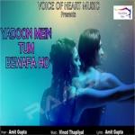 Yadoon Mein Tum Bewafa Ho songs