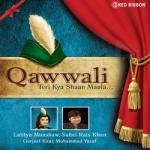 Qawwali - Teri Kya Shaan Maula songs