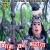 Listen to Bhang Ka Bharota from Bhang Ka Bharota