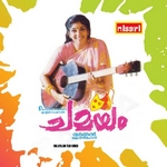 Chamayam songs