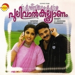 Pulival Kalyanam songs