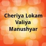 Cheriya Lokam Valiya Manushyar songs