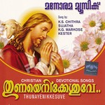 Listen to Yesuve Kanden  songs from Thunayenikkesuve