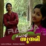 ചൊല്ലു സുന്ദരി (മാപ്പിള സോങ്സ്) songs