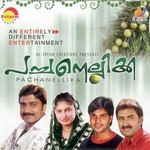 Pachanellikka (Mappila Songs) songs