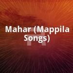 മഹർ (മാപ്പിള സോങ്സ്) songs