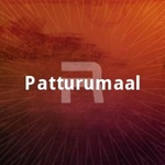 Patturumaal songs