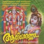 Aalilakanna songs