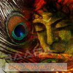 Bhajanamrutham songs
