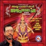 Ayyappan Namarchana songs