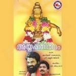 Ayyappan Theertham songs