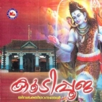 Koodipooja songs