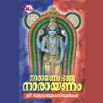 Narayayanam Bhaje Narayanam songs