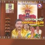 പാമ്പാടി നാഗപൂജ songs