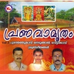 Pranavamritham - Vol 3 songs
