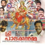 Sree Palakkunnamma songs