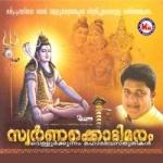 Swarnakkodimaram songs