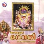 ഭദ്രേ ഭഗവതി - പാർത്ഥസാരഥി songs