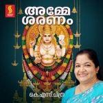 Amme Saranam songs