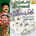 Perunnalkili 2007 songs