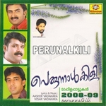 Perunnalkili - Vol 2 songs