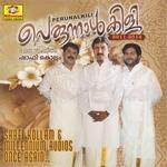 Perunnalkili 2011-2012 (Vol 1) songs