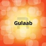 Gulaab songs