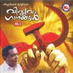 Viplavaganangal - Vol 2 songs