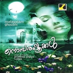 Nombarapookal songs