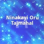 Ninakayi Oru Tajmahal songs