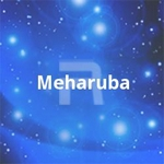 Meharuba songs