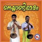 Neyyandimelam (Ambient) songs