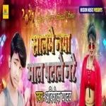 Saal Me Naya Mal Patale Nare songs