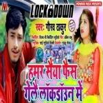 Hamar Saiyan Fes Gele Lockdown Mai songs