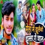 Mela Mai Jhulebo Tora Jhulla Ae Jaan songs