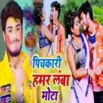 Pichkari Hamar Lamba Mota songs