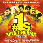 Sher-E-Punjab