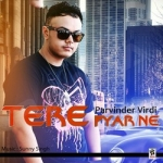 Tere Pyar Ne songs